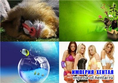 Kashebas wallpapers pack 13